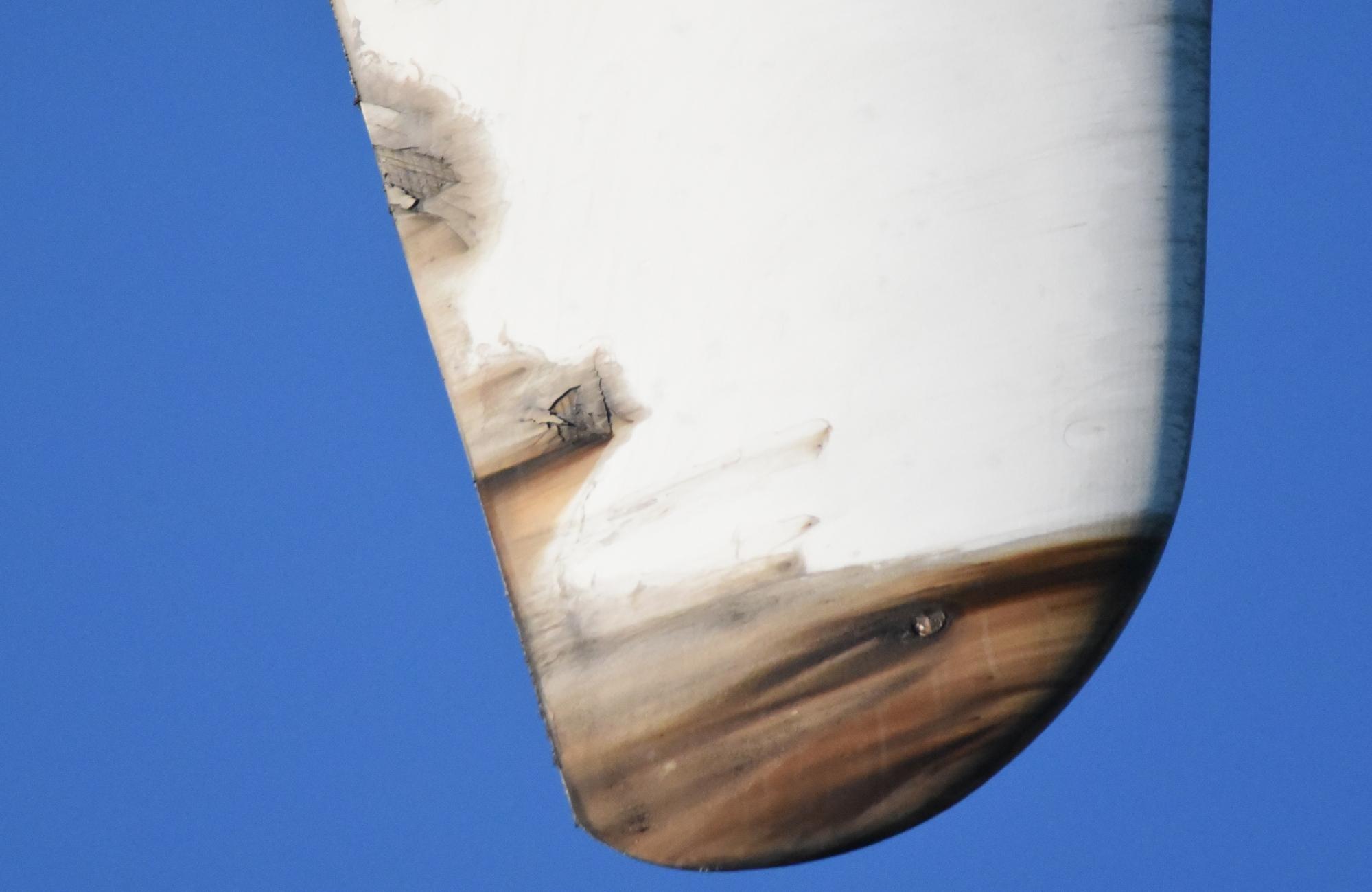 oil in blade